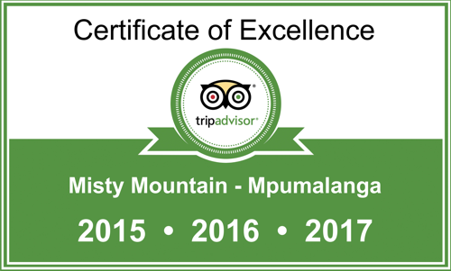 TripAdvisor & Reviews